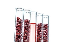 Red beans genetically modified, Plant Cell Stock Photo