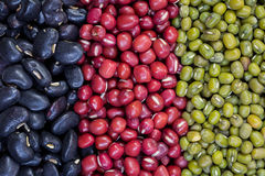 Red beans, green beans, black beans arranged in a vertical row. Stock Image