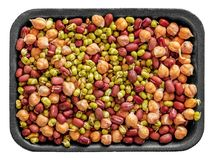 Red beans, green beans and peas. On a rectangular tray royalty free stock image