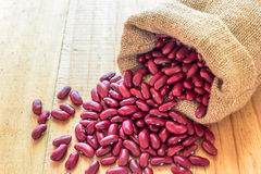 Red beans poured from the sack Royalty Free Stock Images