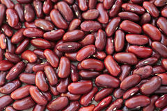 Red Beans Royalty Free Stock Image