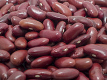 Red Beans. On white  background Stock Photo