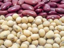 Red Beans. On white  background Stock Images