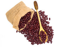 Red beans on white background Royalty Free Stock Images