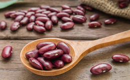 Red beans on wooden spoon Royalty Free Stock Photo
