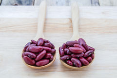 Red beans in wooden spoon Stock Image