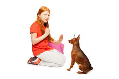 Red beautiful girl taming and training dog Stock Photo