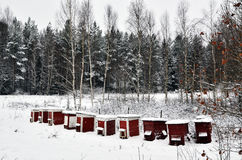 Red bee hives Royalty Free Stock Photo