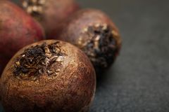 Red beet on a black background, close-up.  stock photo