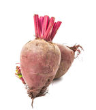 Red beet isolated Royalty Free Stock Photography