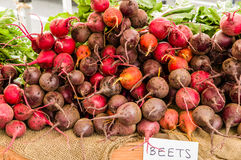 Red beet roots at the market Stock Photos