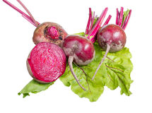 Red beet. Royalty Free Stock Images
