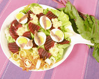 Red beet salad Royalty Free Stock Photos