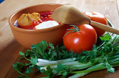 Red-beet soup (borscht) Stock Images