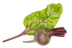 Fresh raw Beetroot isolated isolated on white. Red beet young bulb and one green leaf flatlay isolated on white background top view Royalty Free Stock Image