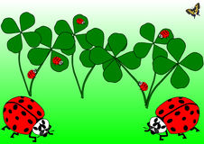 Red beetles, a butterfly and clover leaves Stock Images