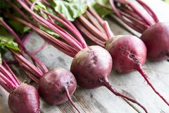Red Beetroot with herbage green leaves on rustic background. Org Royalty Free Stock Images