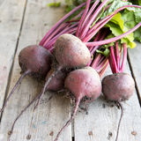 Red Beetroot with herbage green leaves on rustic background. Org Royalty Free Stock Photography