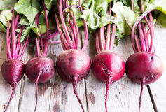 Red Beetroot with herbage green leaves on rustic background. Org. Anic Beetroot Royalty Free Stock Photography