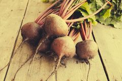 Red Beetroot with herbage green leaves on rustic background. Org Stock Photos