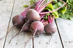 Red Beetroot with herbage green leaves on rustic background. Org. Anic Beetroot Stock Images