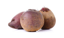 Red beetroot on a white background Royalty Free Stock Photo