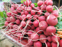Red Beetroots-Close up Scene stock images