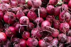 Red beets on display at the farmer's market Stock Images