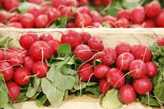 Red beets in a grocery Royalty Free Stock Photography