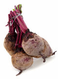 Red beets on white Royalty Free Stock Images