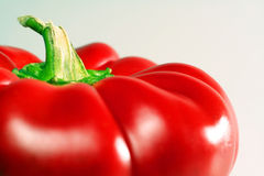 Red Bell pepper. Isolated royalty free stock photo
