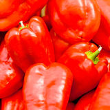 Red bell pepper Stock Images