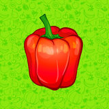 Red bell pepper on color background. vector illustration Royalty Free Stock Photography