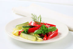 Red bell pepper and cucumber sticks Stock Photography