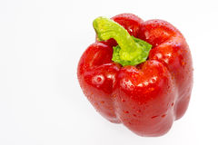 Red bell pepper with drop of water Stock Photography