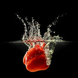 Red bell pepper falling in water with splash on black background Stock Image