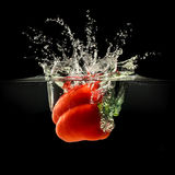 Red bell pepper falling in water with splash on black background Royalty Free Stock Photo