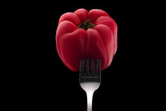 Red bell pepper impaled on a silver fork Royalty Free Stock Image
