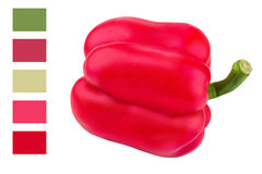 Red bell pepper isolated on a white background Stock Image