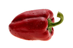 Red bell pepper isolated on a white background with water drops Stock Image