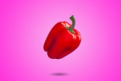 Red bell pepper on pink background whit gradient Royalty Free Stock Image