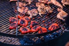 Red bell pepper and quail on the grill. Roasted red pepper halves and poultry grilled quail royalty free stock photos