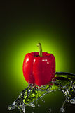 Red Bell Pepper Splash Royalty Free Stock Image