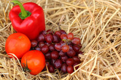 Red bell pepper, vegetables and fruits. Stock Images