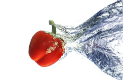 Red bell pepper in water Stock Images