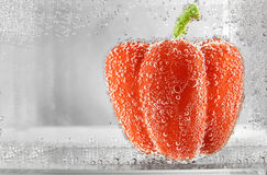 Red bell pepper in water with bubbles of gas Royalty Free Stock Photos