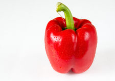 Red Bell Pepper with Water Droplets in White Background Stock Image