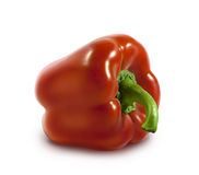 Red bell pepper  on white background Royalty Free Stock Images