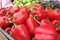 The red bell peppers in a basket Stock Photography