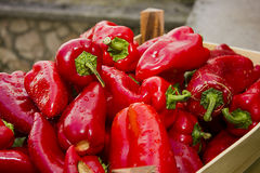 Red Bell Peppers fresh Stock Images